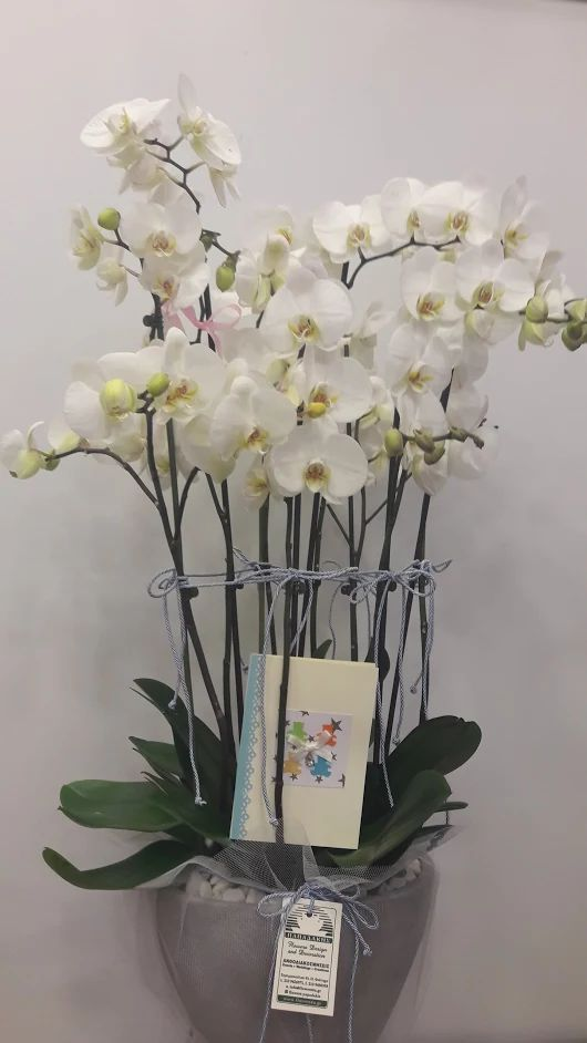 Papadakis Flowers  weddings-events-decorations tel 00302109426971 info@flowers4u.gr διάκοσμηση γάμου - βάπτισης -δεξίωσης  luxury events by Team Flowers Papadakis