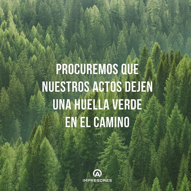 Contamos con las certificaciones FSC y PEFC, normas que garantizan que el uso de papel y cartulina utilizados, fabricadas con pulpa de bosques, serán reforestados 🍃🌿!