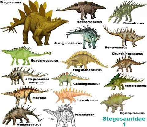 0916fd1f153e001afbfcd8279aa655a2--jurassic-park-fossils.jpg