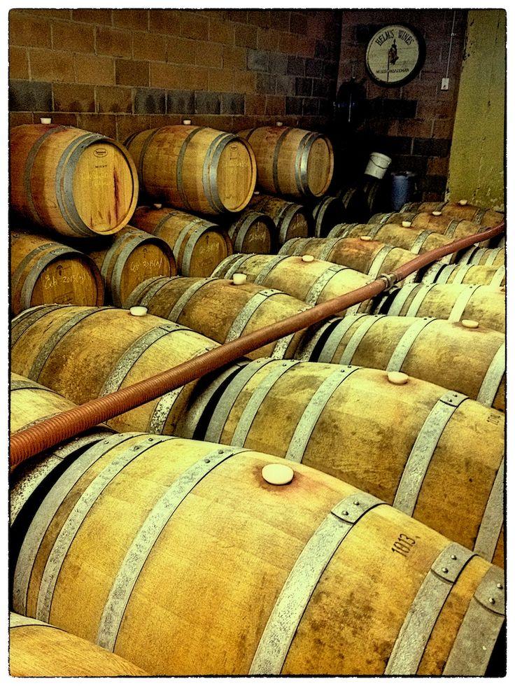 Helm's Wines (Canberra region), great Rieslings....