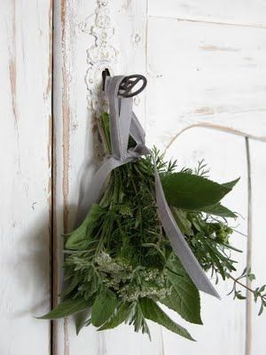 Simple and beautiful herbs.: Ideas, The Doors, Sweet, Simple, Winter Wedding, Holidays Tables, Christmas Decor, Herbs Bouquets, Christmas Green