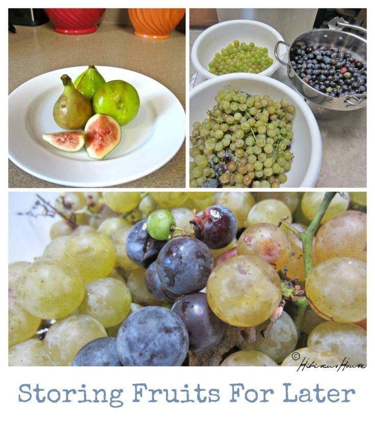 DIY Juicing Fresh Grapes Easy delicious recipes, Fruit
