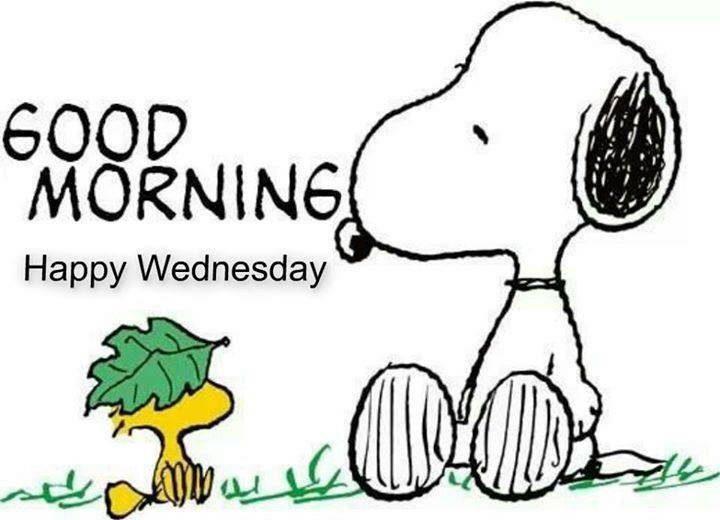 wednesday good morning | Snoopy Good Morning Happy Wednesday Pictures, Photos, and Images for ...