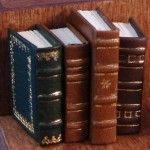 bibliotheekboeken