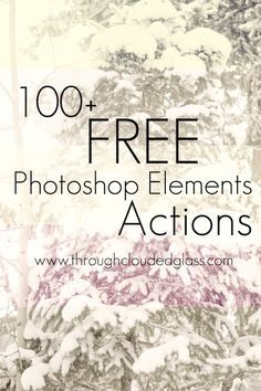 Free Photoshop Elements Actions! | Through Clouded Glass Blog