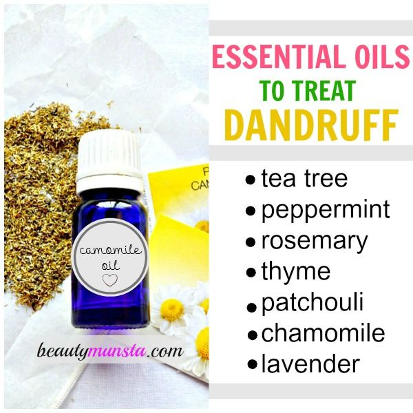 Using essential oils for dandruff is one of the best home remedies to treat, soothe & calm an itchy scalp as well as get rid of dandruff once and for all. Tea tree essential oil contains powerful antiseptic, antimicrobial and antibacterial properties that will kill bacteria, yeast and germs that accumulate on the scalp and cause dandruff.