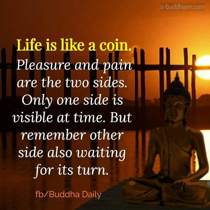 Pin by Bhavana Kaparthy on Buddha | Good morning quotes