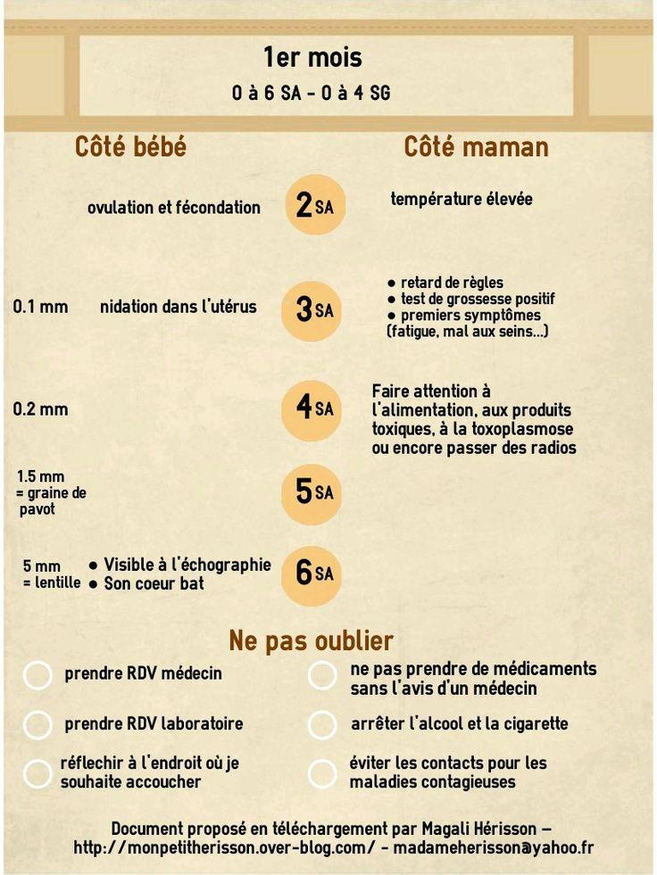 Fiche pratique du 1er mois de grossesse : côté bébé, côté maman, les examens et la to-do-list des choses à ne pas oublier ! A insérer dans son agenda ou carnet de grossesse ! #bulletjournal #bujo #printable #pregnancy #grossesse