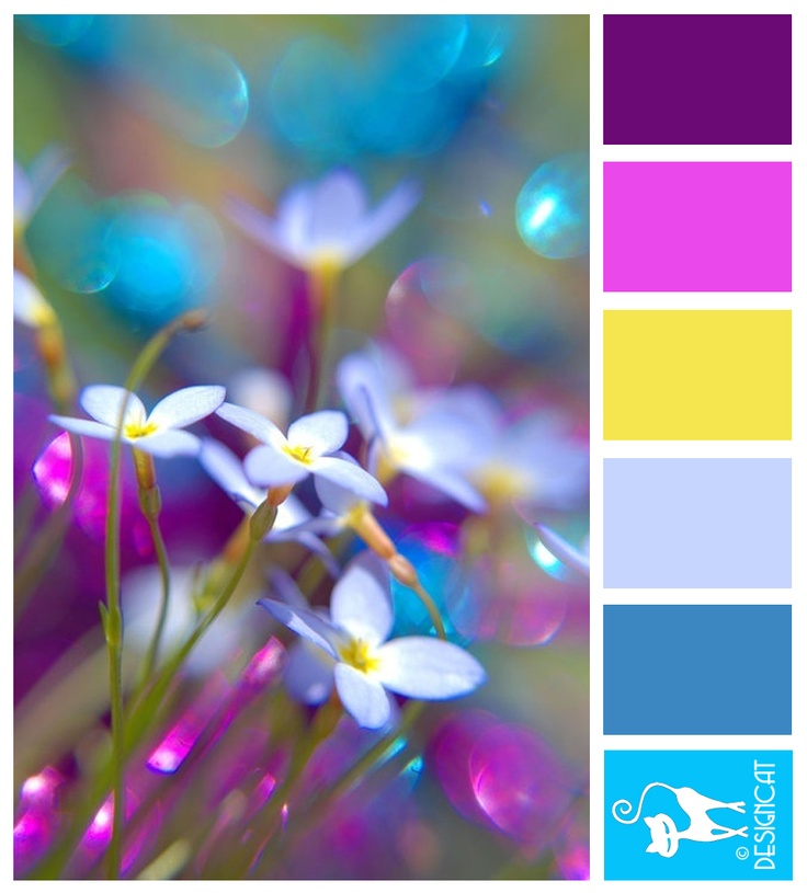 Bluets: Purple, Pink, Yellow, Pastel, Blue, Cyan - Colour Inspiration Pallet