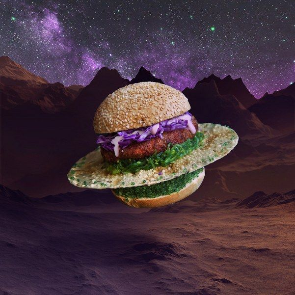 The-21-photos-of-the-most-creative-burgers-you-will-ever-see-5