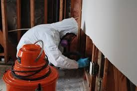 For the most reliable inspectors in Fort Lauderdale, call the experts of Mold Inspection Fort Lauderdale Specialist. We will give you a consultation over the phone and let you know if your need Mold Testing. We collect samples of different parts of your home, business, or commercial building in order to determine if your indoor air has elevated levels of mold. More Details: http://miamimoldspecialist.com