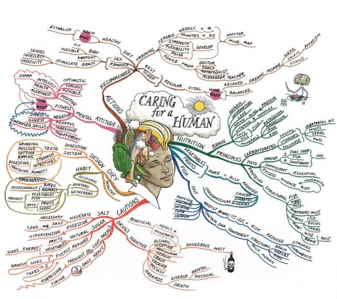 Caring for a Human Mind Map created by Tony Buzan. The Mind Map breaks down attitudes and actions, dietary and nutritional and exercise, including ways and methods of caring for the body both within and without.