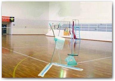 Consigli di pulizia parquet sportivi  Igienizzazione e pulizia dei pavimenti in legno.