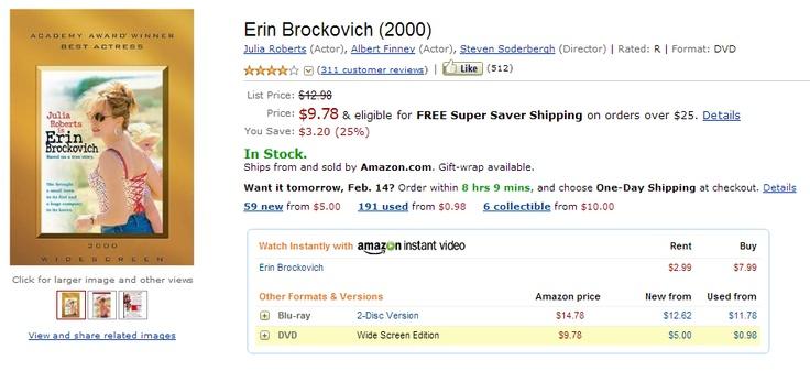 essays on erin brockovich