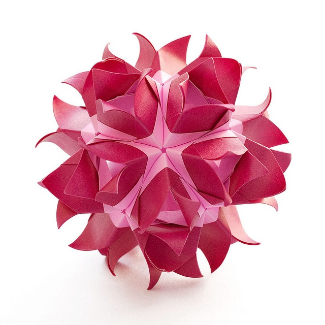1000 images about a origami 01  2014 on pinterest