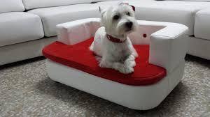 Image result for cama de perro auto