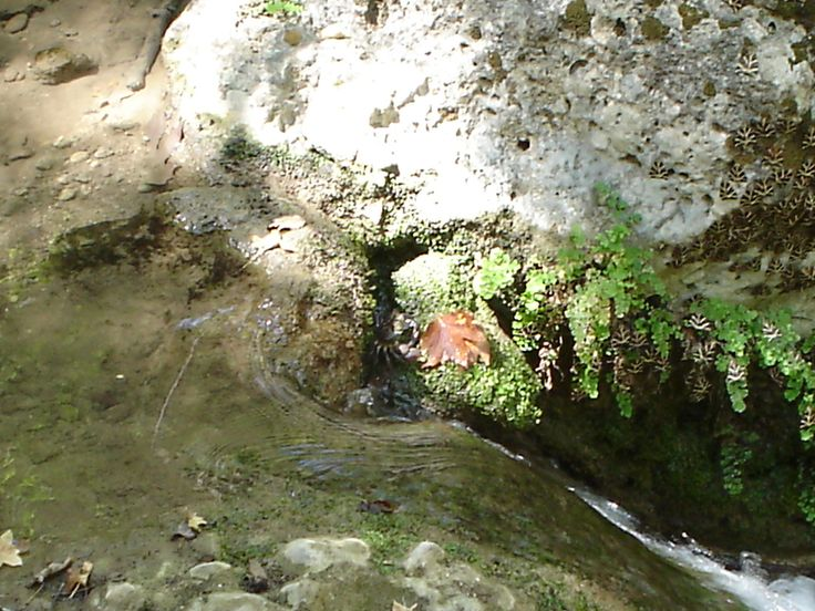 The Rocks And The River In The Valley Of The Butterflies - Rhodes Greece