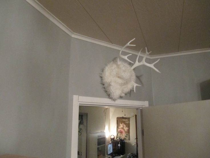 reindeer horns Bedroom Decoration