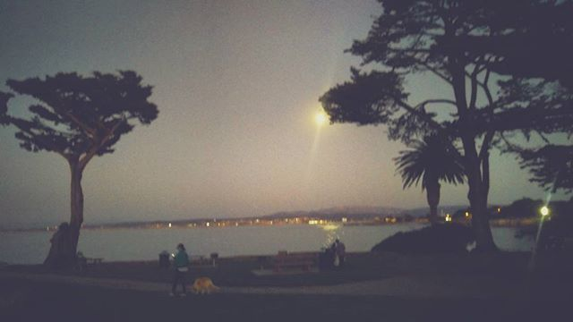 Moon rise over Monterey Bay on my birthday. Oct. 3  #staysafesantarosa  #pacificgroveca #pacificgrove #montereybay #moon #moonrise #water #waterfront #californialivin #california #cali #beauty #night #cypress #silhouette #trees #park #montereybaylocals - posted by Nikki Moore https://www.instagram.com/nikkimsoco - See more of Monterey Bay at http://montereybaylocals.com