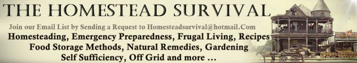 9 Survival Items That Should Be In Your Safe Right Now | The Homestead Survival
