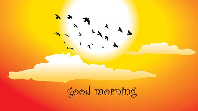 Latest Good Morning Images SMS in Hindi Wishes and Quotes | DailysmsPK.Net