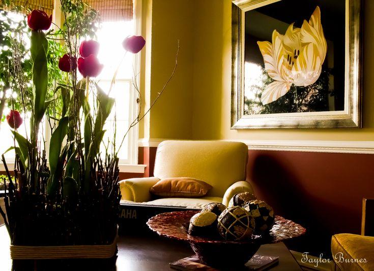 casa ilumidada, com luz solar