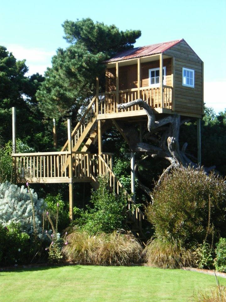 5-star treehouse