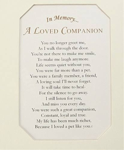 Famous Quotes About Death Of A Loved One: ♥♡Quotes About Loss Of A Pet ️