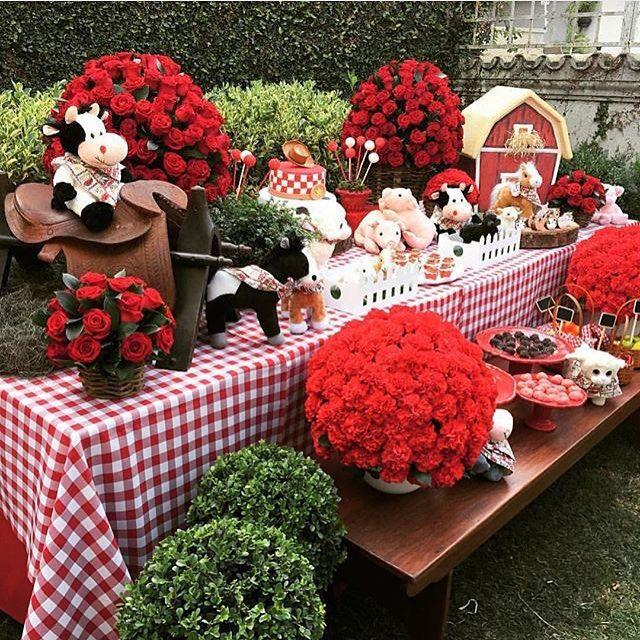 Olha que linda essa festa Fazendinha, amei! Tudo lindo! #regram @asmeninaslocacoes ❤️ #kikidsparty