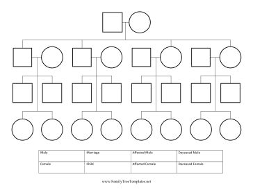 Worksheets Pedigree Charts Worksheet 25 best ideas about pedigree chart on pinterest family trees this free printable is great for genealogists and tree projects it