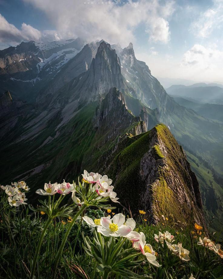 Landscape Photography Settings Landscapephotographytips Landscape Photography Landscape Photographers Beauty Landscapes