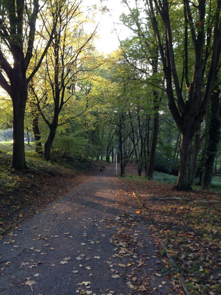 Park Kerkrade  Nov 2014