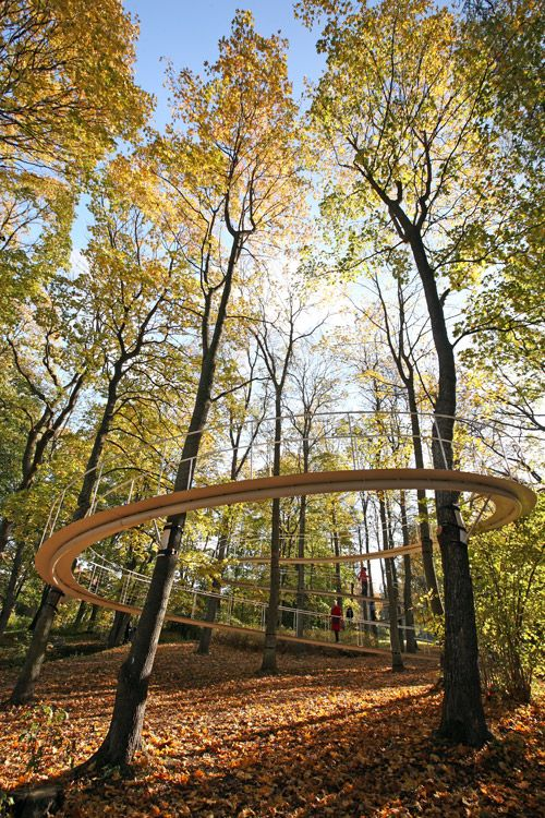 a path in the forest photo by reio avaste 04 « Landscape Architecture Works | Landezine