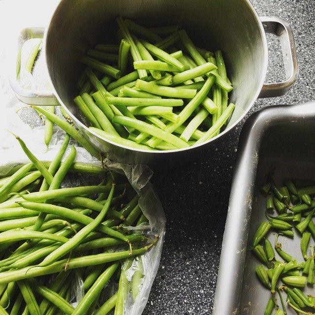 Wat eten we vandaag? Ik maak alvast de veggies schoon voor vanavond.  Boontjes. Die LUSTEN mijn kinderen alleDRIE. Iemand, bel de krant! Zelf vind ik ze ook niet te versmaden en je kan er bergen van weghappen zonder dat ze op je heupen belanden. Echt wel ideaal!