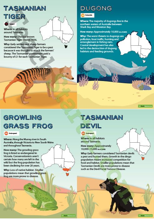 A collection of posters showing information regarding the status of endangered and extinct Australian animals.