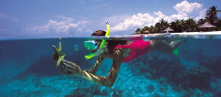 Find the best snorkeling gear for your next tropical vacation, with the best snorkel masks and fins to explore the reef with. These travel bundles have got you covered! diverworld.info/the-best-snorkel-gear-mask-fins-reviews