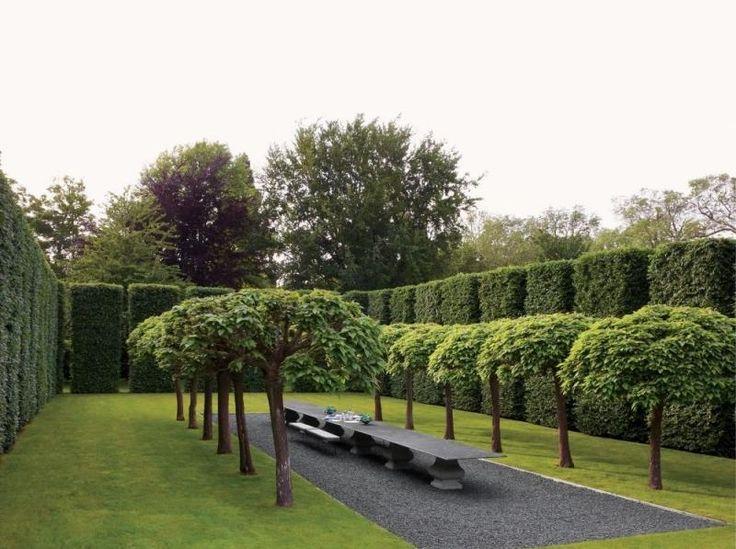 Die besten 25 immergr ne b ume landschaftsbau ideen auf for Gartengestaltung unterschiedliche hohen