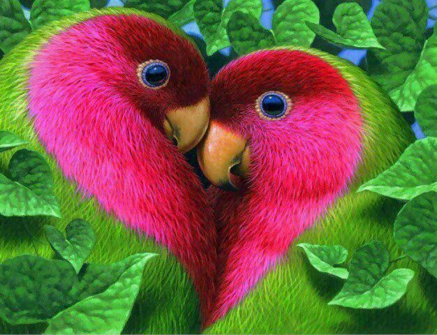 Pink and green heart lovebirds in leaves