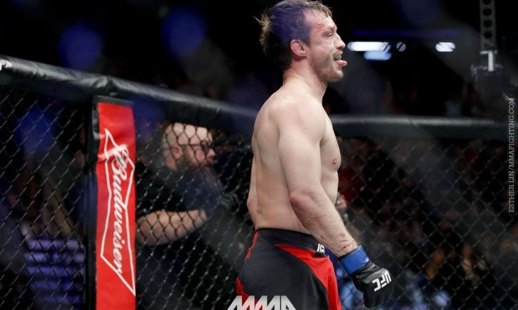 Five bouts announced for UFC Fight Night: London, including Brad Pickett's retirement fight