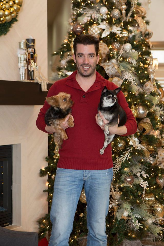 Gracie & Stewie really loved their first Christmas in our newly renovated #Vegas home :)