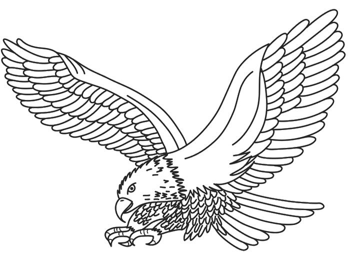 printable eagle coloring pages - photo#26