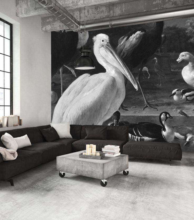Gave zwart-wit behang met diverse mega-grote watervogels. Weer eens wat anders!  #vogels #behang #zwartwit #tapete #papierpeint #wallcovering