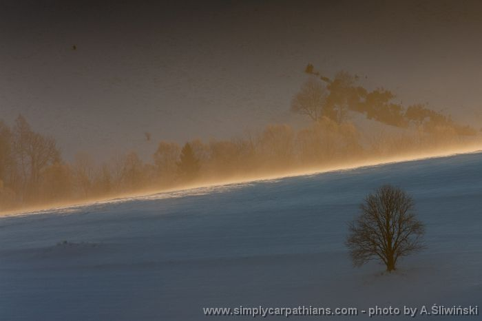Early morning in the Bieszczady Mountains #Poland  www.simplycarpathians.com