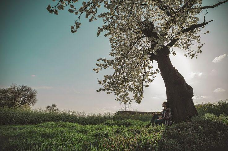 Op adem komen bij God ღ: Geef me een andere focus, Heer. Elke goede gave en elk volmaakt geschenk is van boven en daalt neer van de Vader der lichten, bij Wie er geen verandering is, of schaduw van omkeer. Jacobus 1:17  Ik focus me op goede gaven. Op onverwachte geschenken. Grote en kleine zegeningen fleuren het leven op. Ik wil leven in het licht van Zijn onveranderlijke liefde. Ik focus me vooral op Hem.