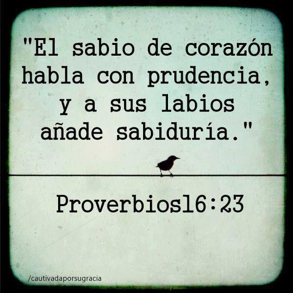 Muito Mejores 81 imágenes de Proverbios Bíblicos en Pinterest  LY31