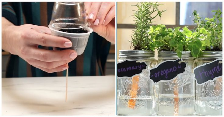 I've always wanted to grow my own garden, but this isn't the easiest task in a small New York City apartment. After watching this simple DIY craft, though, I'm definitely going to be able to have my very own herb garden! Fresh herbs are the best, but I usually end up using dried herbs because...