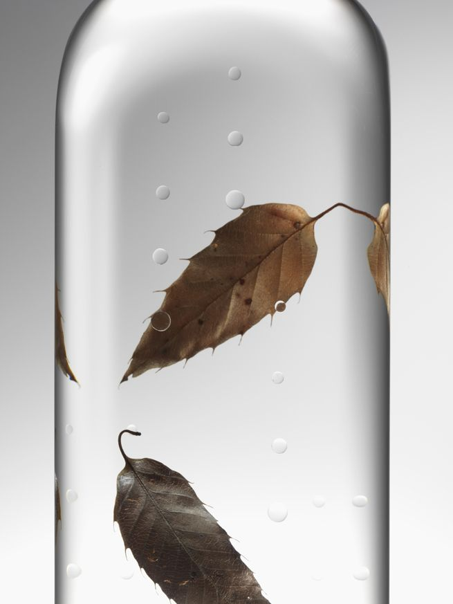 rain_bottle27_hiroshi_iwasaki