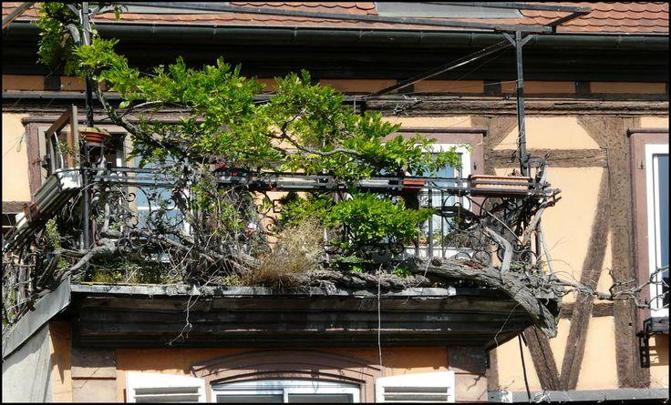 sichtschutz terrasse konfigurieren ~ kreatif von zu hause design ideen,