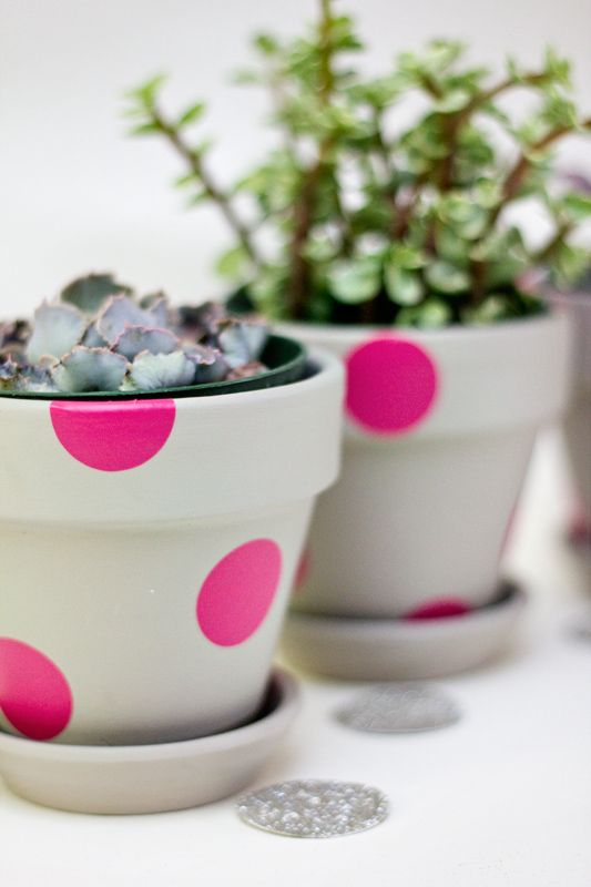 easy polka dot painted terracotta pots (Sarah Hearts)