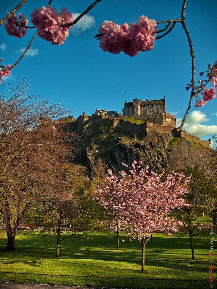 Springtime in Edinburgh